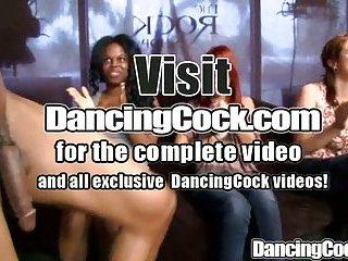 Dancingcock Fat Cocks Orgy
